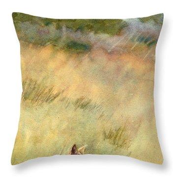 Coyote Santa Rosa Plateau Throw Pillow by Bonnie Rinier