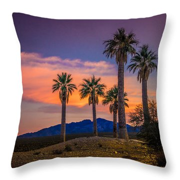 Coyote Springs Nevada Throw Pillow