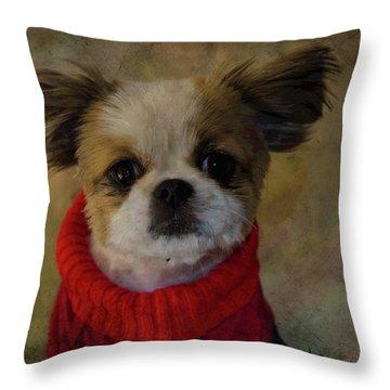 Cozy Sadie Throw Pillow by Al Bourassa