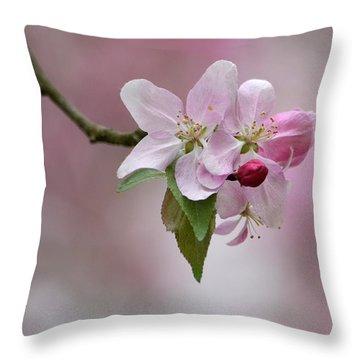 Crab Apple Blossoms Throw Pillow by Ann Bridges