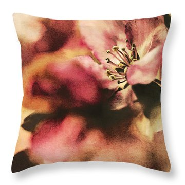 Crab Apple Blossoms IIi Throw Pillow