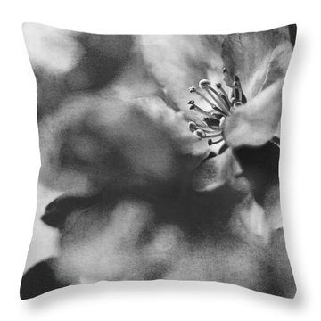 Crab Apple Blossoms Throw Pillow