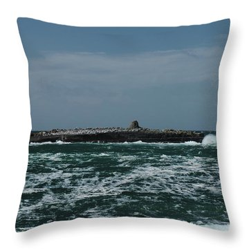 Crab Island Throw Pillow