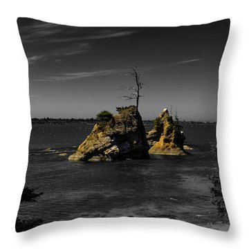 Crab Rock Throw Pillow