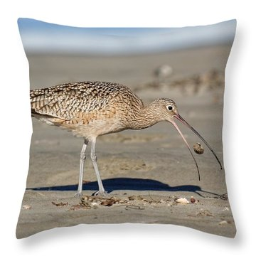 Crab Toss - Curlew Throw Pillow