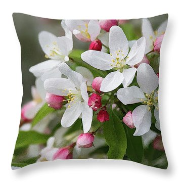 Crabapple Blossoms 12 - Throw Pillow