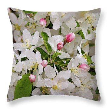 Crabapple Blossoms 5 Throw Pillow
