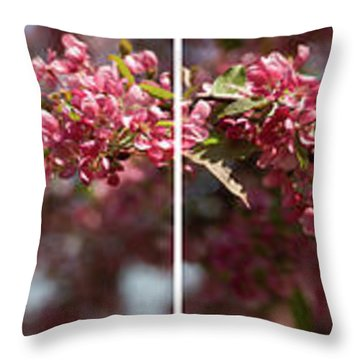 Crabapple In Spring Panoramic Map Throw Pillow