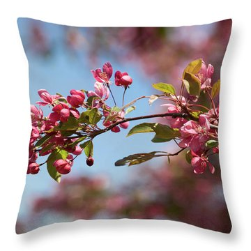 Crabapple In Spring Section 1 Of 4 Throw Pillow