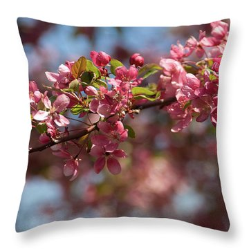 Crabapple In Spring Section 2 Of 4 Throw Pillow