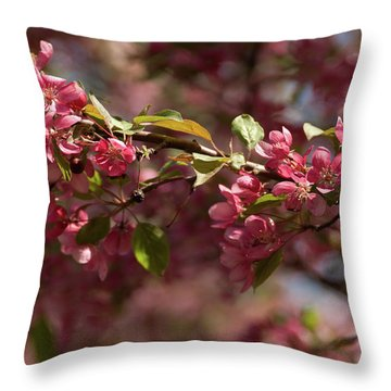 Crabapple In Spring Section 3 Of 4 Throw Pillow