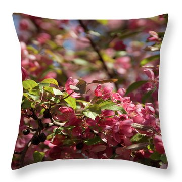 Crabapple In Spring Section 4 Of 4 Throw Pillow