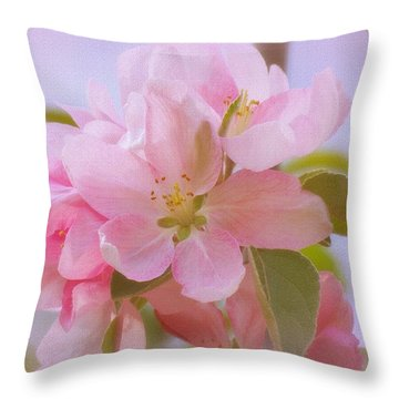 Crabapple Pink Throw Pillow by MTBobbins Photography