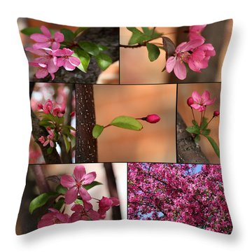 Crabapple Spring 1 Throw Pillow by Mary Bedy