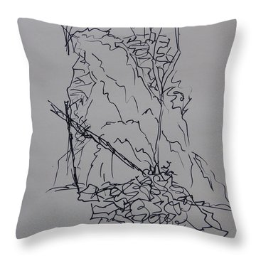 Crabtree Falls - A Sketch Throw Pillow