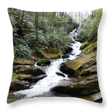 Roaring Fork Falls  - May 2015 Throw Pillow