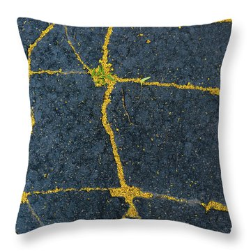 Cracked #1 Throw Pillow