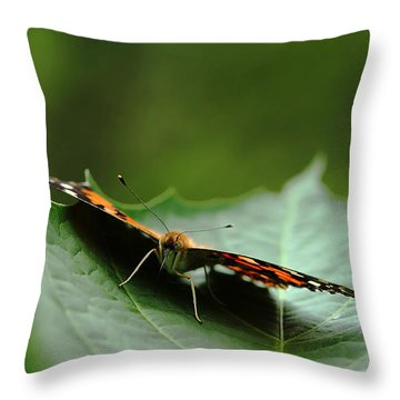 Cradled Painted Lady Throw Pillow by Debbie Oppermann