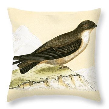 Crag Swallow Throw Pillow by English School