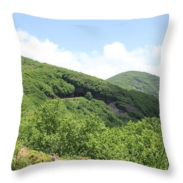 Craggy Gardens Throw Pillow