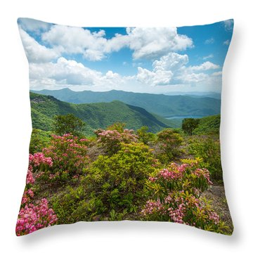 Craggy Gardens Blue Ridge Parkway Stunning Vista Throw Pillow