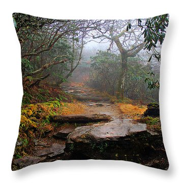Throw Pillow featuring the photograph Craggy Gardens by Jessica Brawley