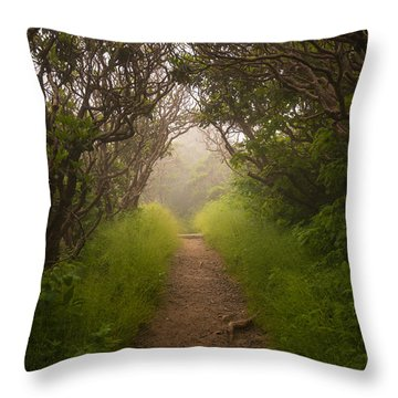 Craggy Pinnacle Trail Blue Ridge Parkway Throw Pillow