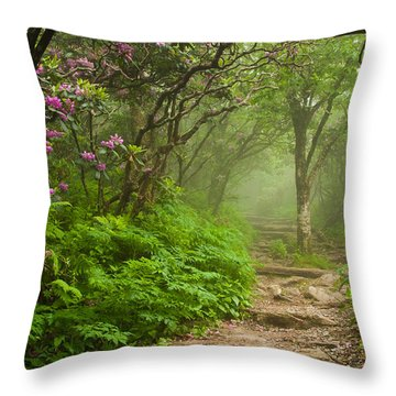 Craggy Steps Throw Pillow