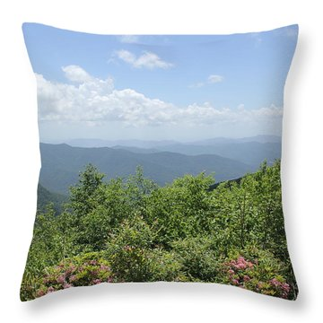 Craggy View Throw Pillow