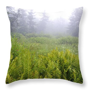Cranberry Glades Early Morning Throw Pillow by Thomas R Fletcher