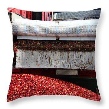 Cranberry Harvest Throw Pillow