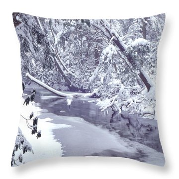 Cranberry River Winter Heavy Snow Throw Pillow by Thomas R Fletcher