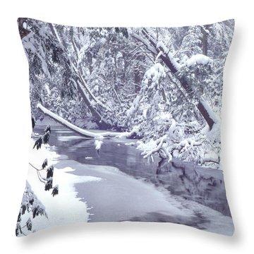 Cranberry River Winter Heavy Snow Throw Pillow by Thomas R Fletcher