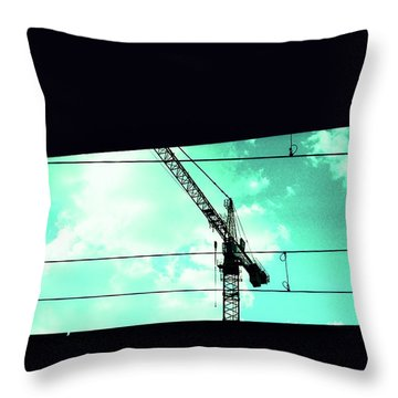 Crane And Shadows Throw Pillow