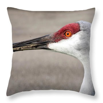 Crane Closeup Throw Pillow