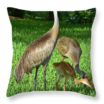 Crane Family Picnic Throw Pillow