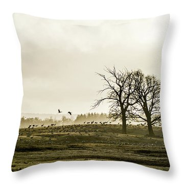 Crane Hill Throw Pillow by Torbjorn Swenelius