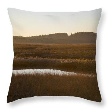 Crane Reservation Sunrise Crane Beach Ipswich Ma Throw Pillow