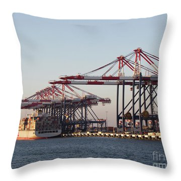 Cranes 2 Throw Pillow