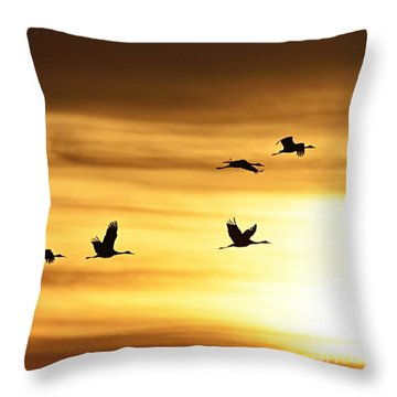 Throw Pillow featuring the photograph Cranes At Sunrise 2 by Larry Ricker
