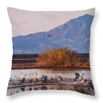 Cranes In The Morning Throw Pillow