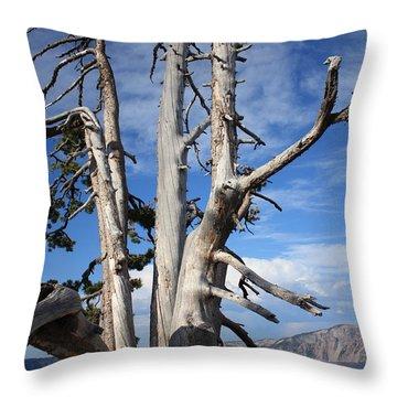 Crater Lake Tree Throw Pillow by Carol Groenen