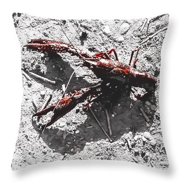Crawdad Catch And Release Throw Pillow
