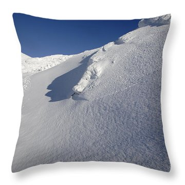 Crawford Path - White Mountains New Hampshire Throw Pillow by Erin Paul Donovan