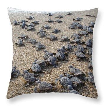 Crawl To The Ocean Throw Pillow