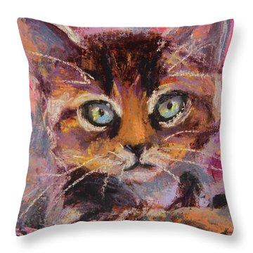 Crazy Cat Tabby  Throw Pillow