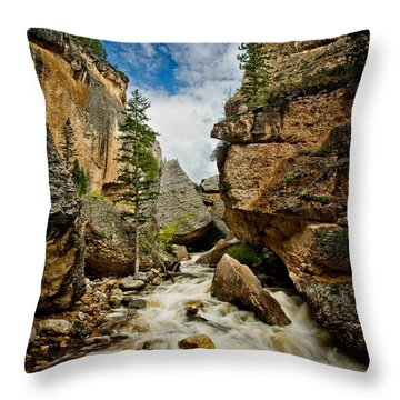 Crazy Woman Canyon Throw Pillow