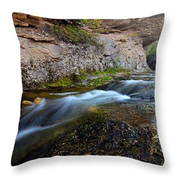 Crazy Woman Creek Throw Pillow
