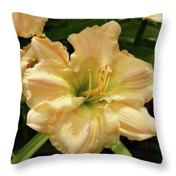 Cream Daylily Throw Pillow