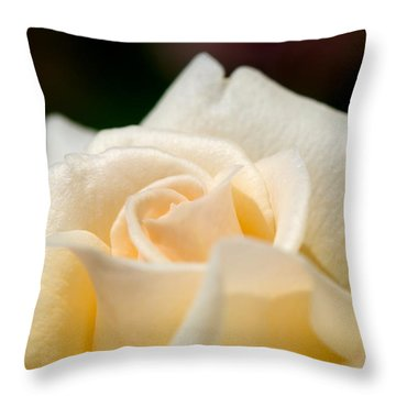 Cream Rose Kisses Throw Pillow